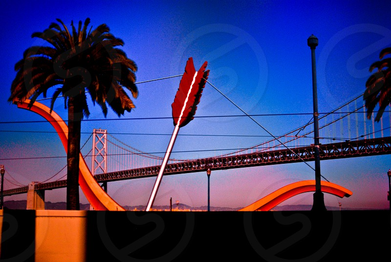 palm trees and golden gate bridge photo