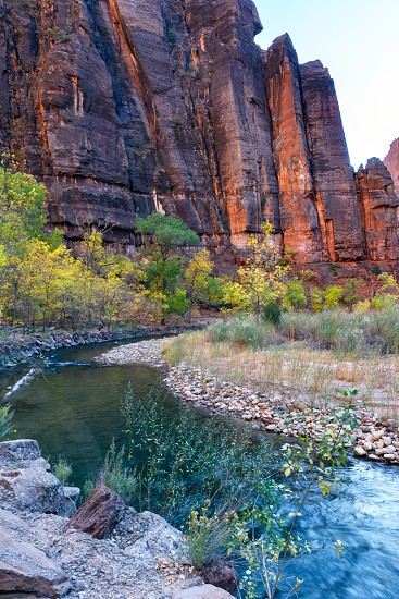 Autumn in the  Virgin River Valley in Zion photo