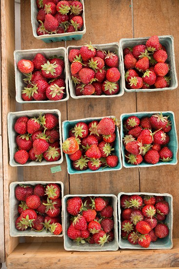 red strawberry on blue plastic container photo
