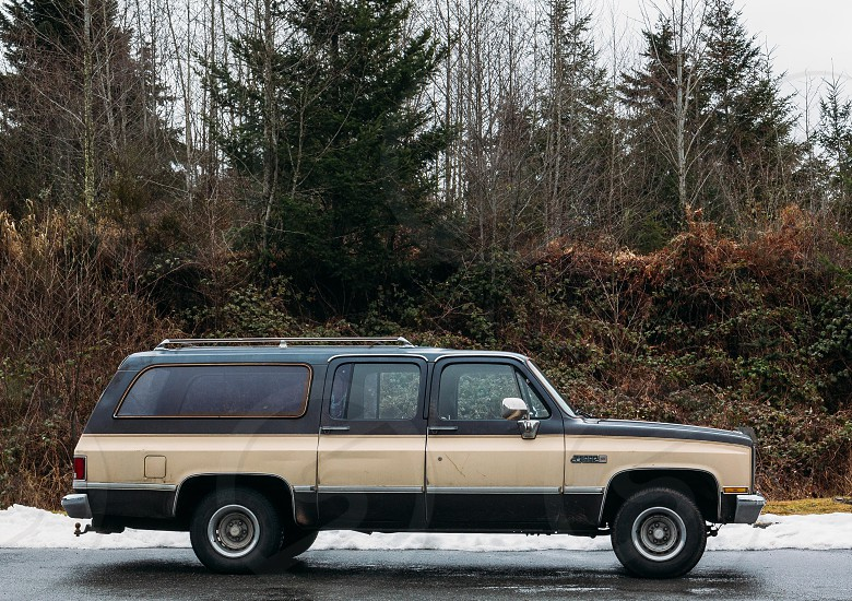 beige and blue station wagon on road near trees photo