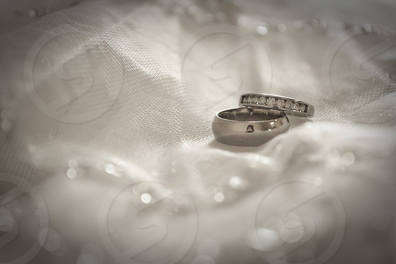 shallow focus photo of two silver-colored rings photo