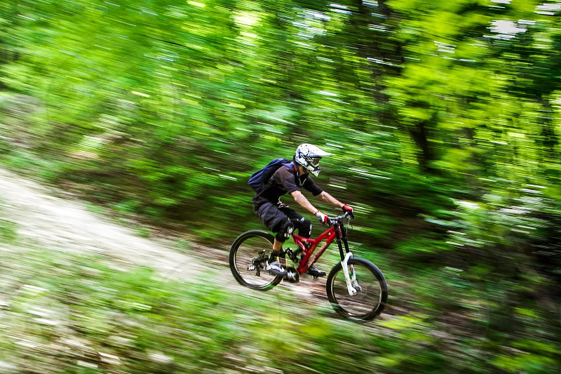 Downhill rider in a forest photo