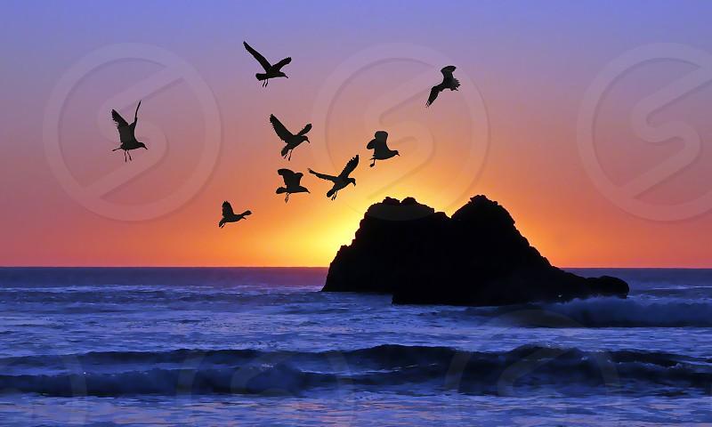 California sunset photo