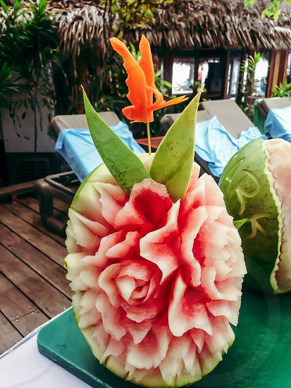 Watermelon carving rose pink tropical poolside. photo