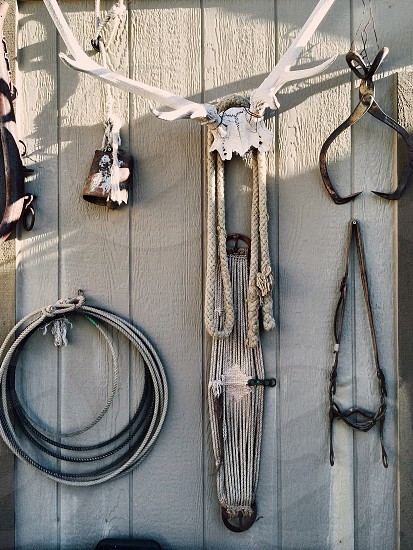 assorted silver metal wire and white rope hanging on white wall from white antlers photo