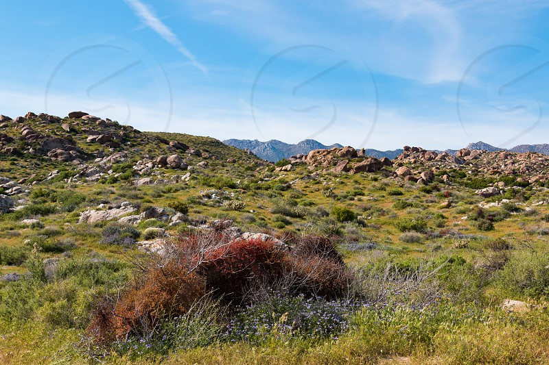 Mountainous area with boulders in Anza-Borrego Desert State Park in San Diego County. photo