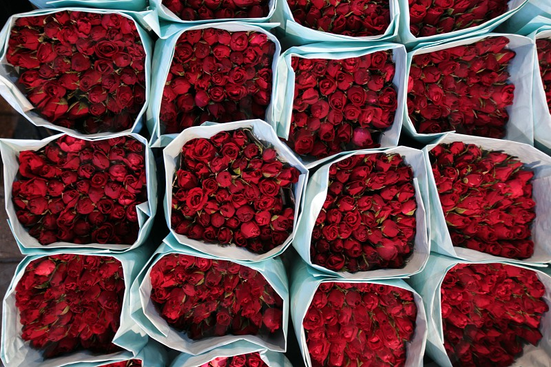 flowers at the flowermarket at the Pak Khlong Markt in Banglamphu in the city of Bangkok in Thailand in Suedostasien. photo