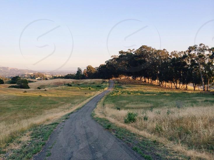 pathway view photo