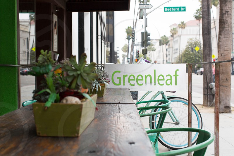 green potted plant on brown wooden table near greenleaf banner photo