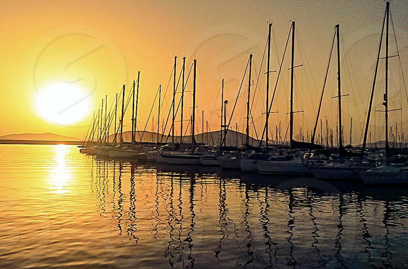 sunset at the marina photo