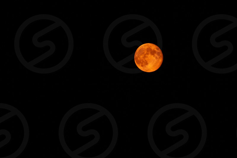Orange Harvest Full Moon photo