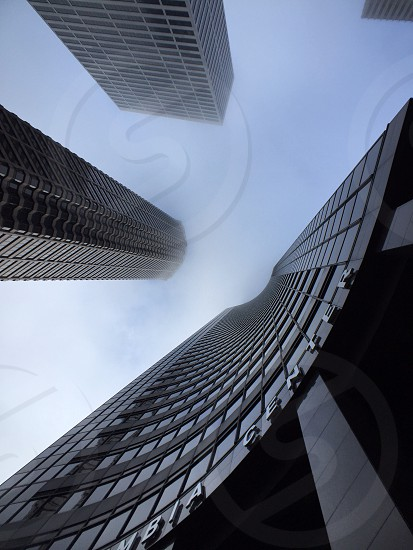 architectural photography of foggy tall buildings photo