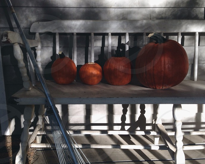 red pumpkins photo