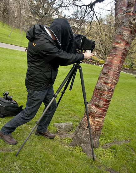 Photographer under hood taking close-up of a tree in a park. photo