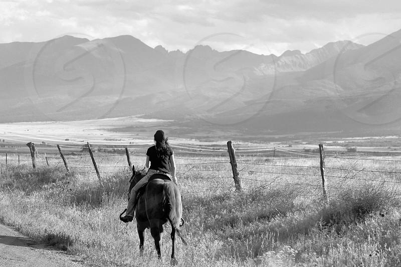 Horse ride photo