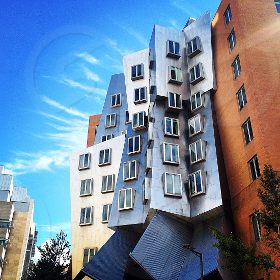 Cambridge MA photo