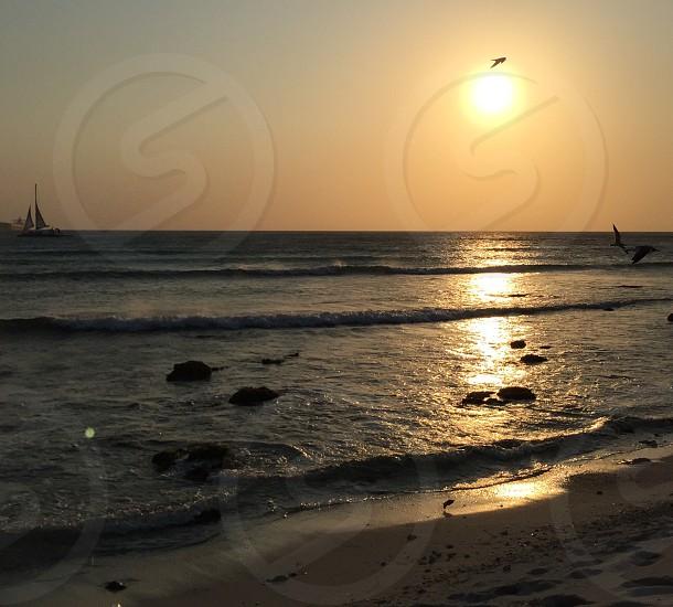 Sunset Aruba water ocean sea waves sun birds photo