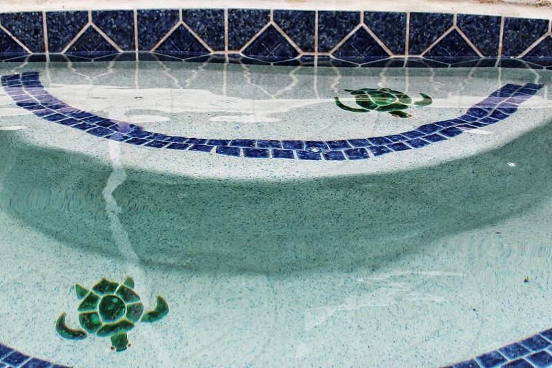 green turtle printed poo; photo