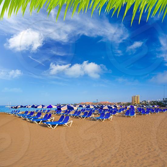 Beach Las vistas in Adeje coast hammocks at Tenerife south Canary Islands photo