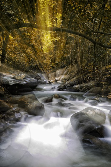 Zoom during a long exposure shot of a river nature water flow forest waterfall scenery rocks landscape greens spring autumn season  benbdprod photo