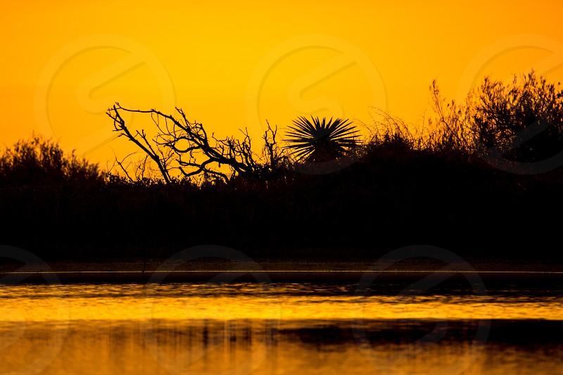 Tidal pond Sunset Lake Park South Texas photo