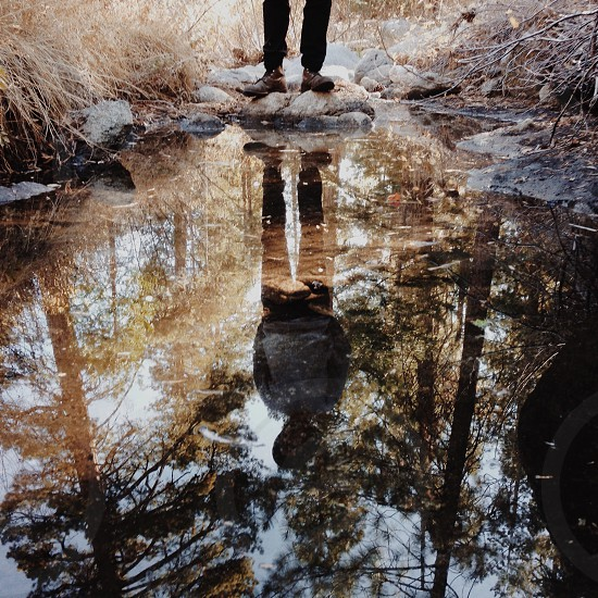 person standing by still water with brown plants all around outdoors man is reflected in water photo