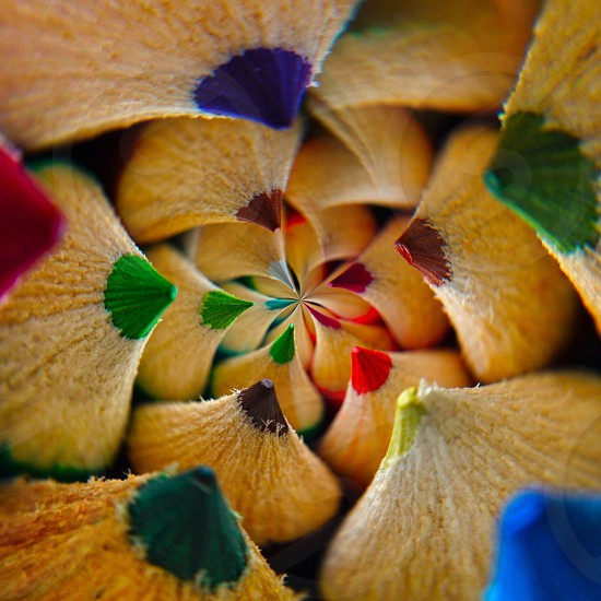 colored pencil tips in a circle photo