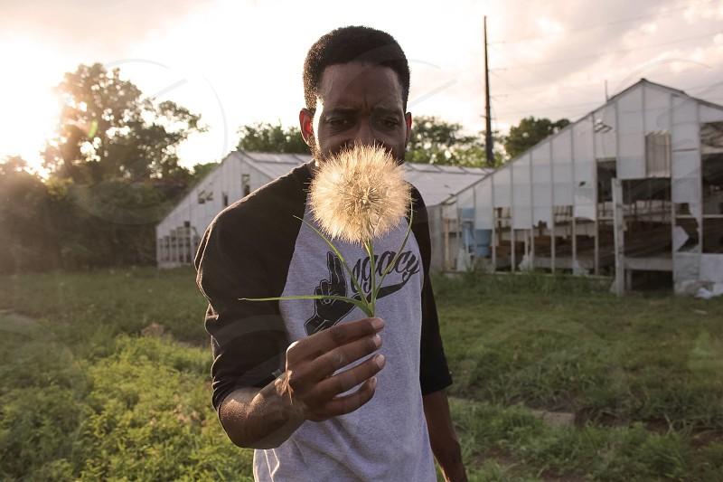 Man field dandelion boy male black sunny photo