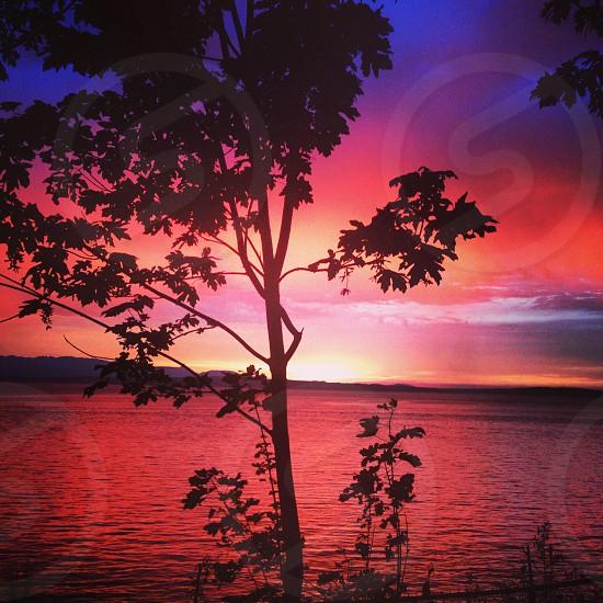 Sunset for Carkeek Park photo