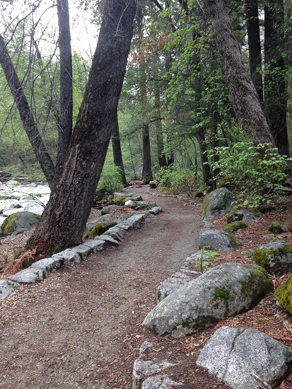 Yosemite trail water spring mountains river stream nature woods photo