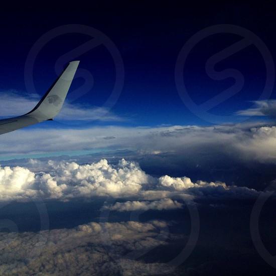 white airplane tail photo