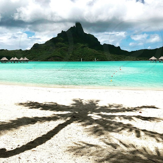 Palm tree sand beach sea ocean lagoon shade shadow silhouette bora bora-bora Polynesia mountain Otemanu  photo