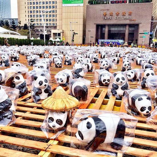 1600panda outdoor exhibition in Taipei Taiwan photo