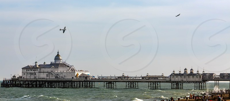 Dogfight over Eastbourne Pier photo