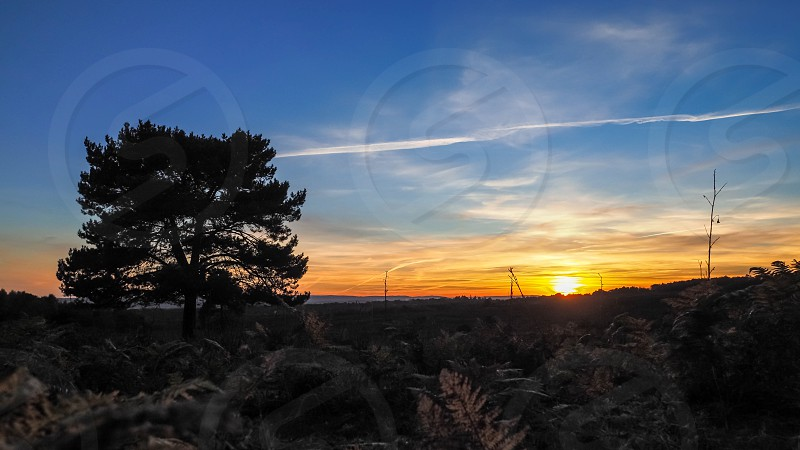 Sunset over the Ashdown Forest in Sussex photo
