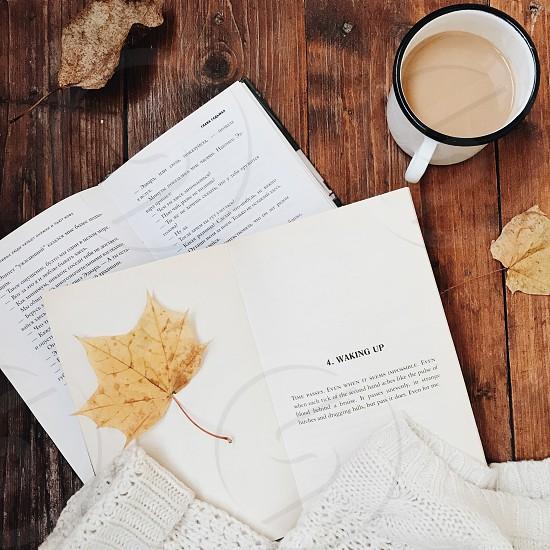 Fall autumn book read morning coffee photo