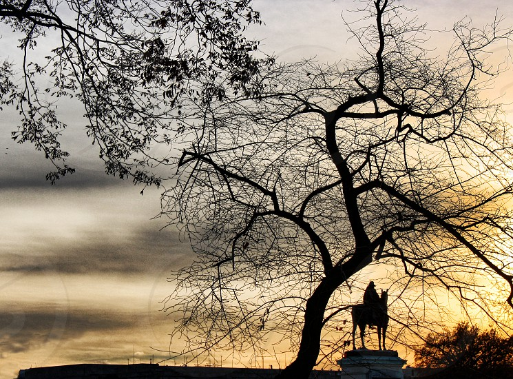 Bare branches and a distant statue are silhouetted against a cloudy sunet photo