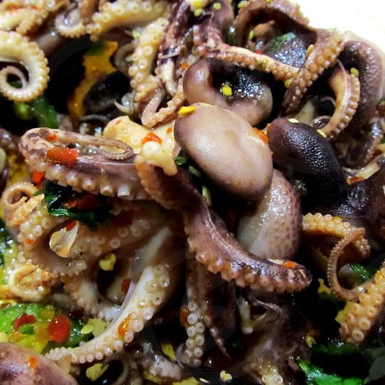 Octopus salad at Japanese restaurant photo