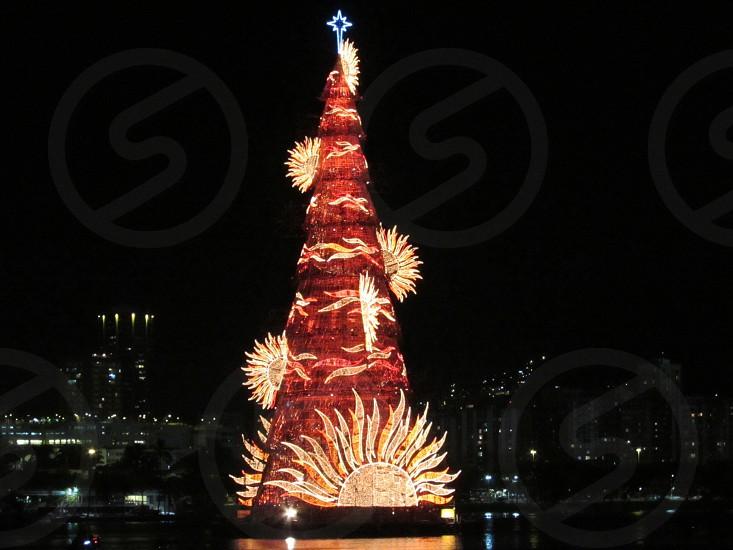 Beautiful Xmas Tree photo