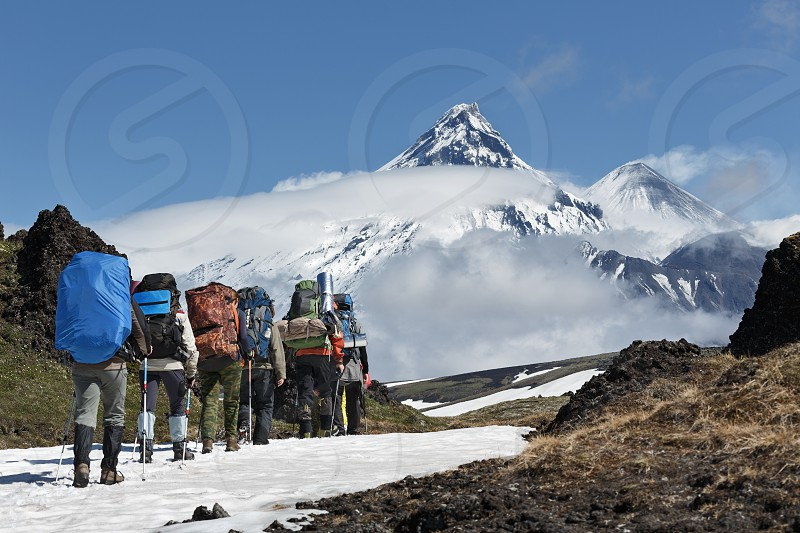 Group of hikers goes in the Kamchatka mountain on the background of Klyuchevskaya group of volcanoes: Kamen Volcano active Klyuchevskoy Volcano and active Bezymianny Volcano on a sunny day. Russian Federation Far East Kamchatka Peninsula. photo