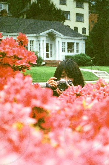 woman near the pink flower photo