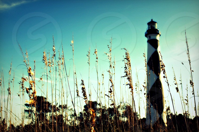 Cape Lookout Lighthouse photo