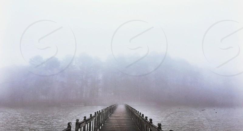 brown wooden bridge above body of water photo