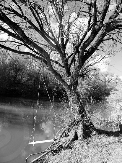 Old swing used by generations at an Arizona creek photo