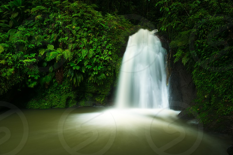 Cascade aux Ecrevisses waterfall in Guadeloupe photo