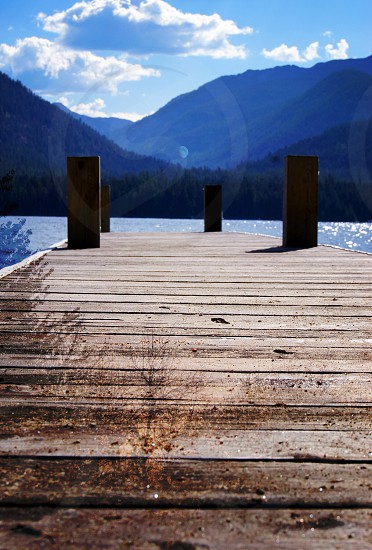 brown wooden dock photo