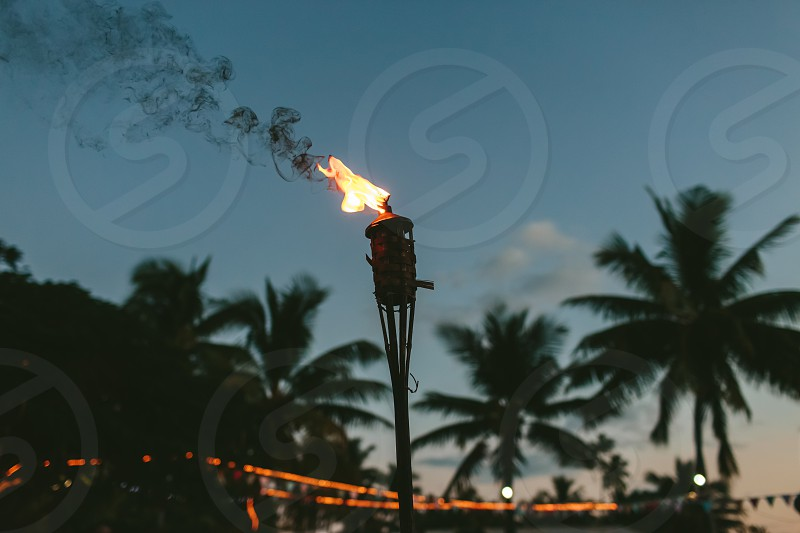 fakkel torch fire flame tropical palmtree lights fairylights dark dusk night party celebration beach smoke photo