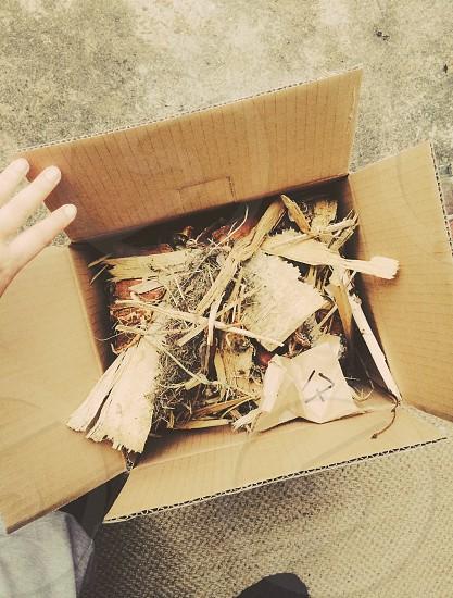 box delivery of fire wood wool socks feet corrugated box photo