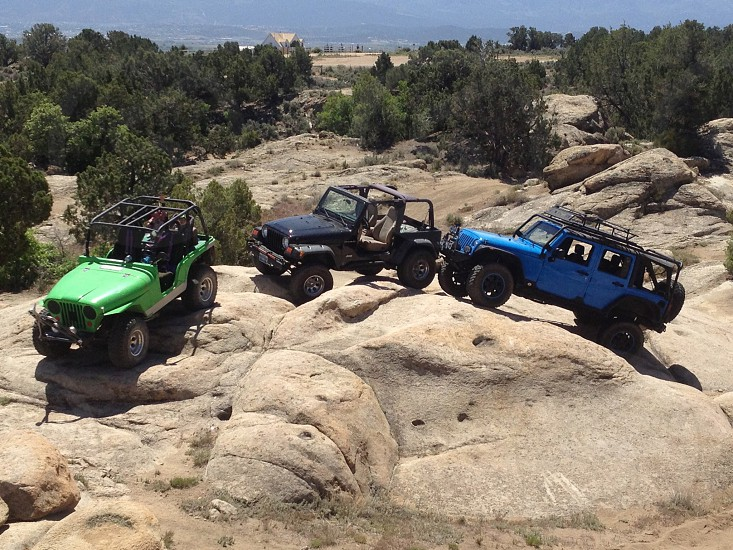 3 green and black blue jeep photo