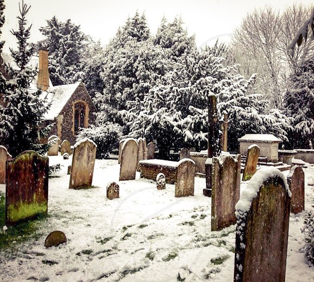 Snowy Country Churchyard photo